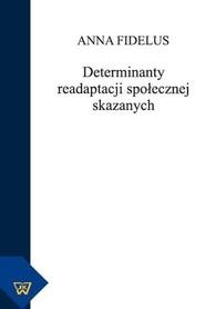Determinanty readaptacji społecznej skazanych, Anna Fidelus